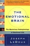 The Emotional Brain (1996)