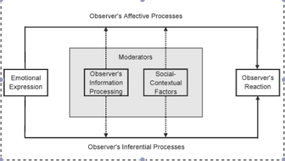 Figure 1 Schematic representation of Emotion as Social Information (EASI) theory. EASI posits that the social effects of emotions (i.e., the effects of one person's emotional expressions on another person's behavior) are mediated by affective and inferential processes. Inferential processes become relatively more predictive of an observer's behavioral reaction to the degree that the observer engages in more thorough information processing and perceives the emotional expression as appropriate, while affective processes become more predictive when information processing is low and the emotional expression is deemed inappropriate.