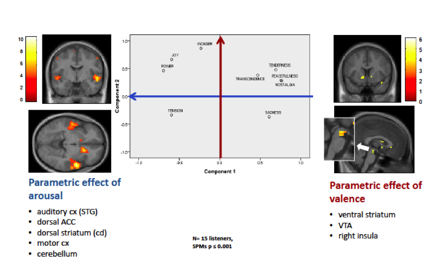 The central figure shows the distribution of 9 musical emotions in a circumplex space. One the left side, we show that higher ratings along the valence axis correlate with selective activations in dopaminergic pathways (ventral striatum and tegmental area) and insula. On the right side, we show that higher ratings along the  arousal axis correlate with activation in auditory cortex, but also anterior cingulate, premotor cortex, and more dorsal regions in striatum (caudate), all regions associated with vigilance and action