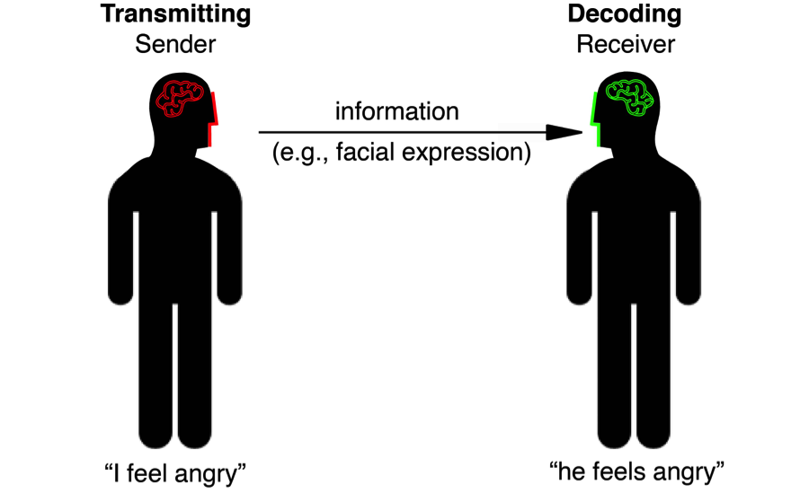 Figure 1: Communication is a dynamic system of information transmission and decoding. Figure from (Jack and Schyns 2015).